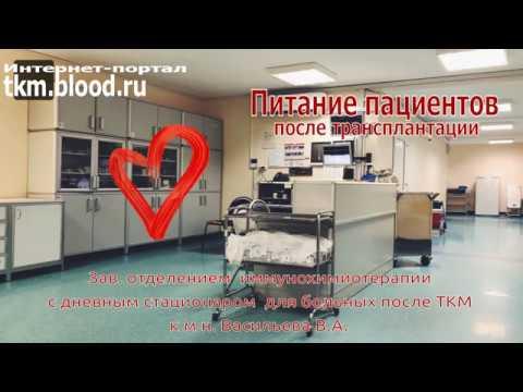 Школа №1. Питание после трансплантации костного мозга и стволовых клеток крови