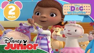 Doc McStuffins | The Pet Rescue Team Save The Town 🐶 | Disney Junior UK