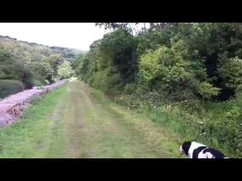 A Walk Up the Line From the Locks Tinnahinch Lower to Tinnahinch Upper on the River Barrow.MOV