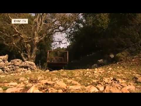 Climate protection comes to Croatia | Global Ideas
