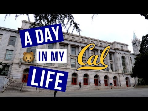 A Day in My Life at UC Berkeley