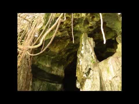 Aventura en las Cuevas de la Mora - Comerío, Puerto Rico