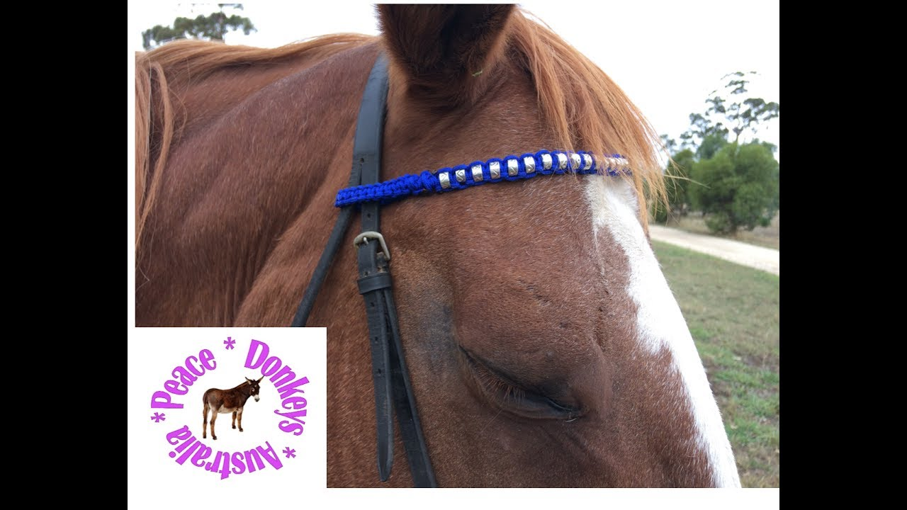 How to make a beaded paracord browband for a horse youtube for Paracord horse bridle