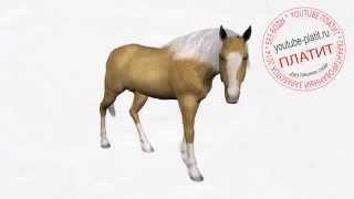 Видео как нарисовать лошадь из мультфильма  Рисуем лошадь поэтапно(как нарисовать лошадь, как нарисовать лошадь поэтапно, как нарисовать карандашом лошадь, как нарисовать..., 2014-08-07T05:38:35.000Z)