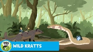 Wild Kratts: Venom Immunity thumbnail