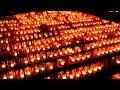 キャンドルナイト下妻砂沼2013 (Candle knight IN Shimotsuma sanuma)