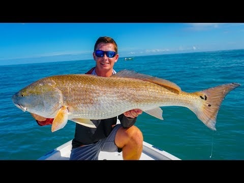 GIANT Redfish & Snook- CATCH CLEAN COOK- Pan Seared Snook And Scallops!