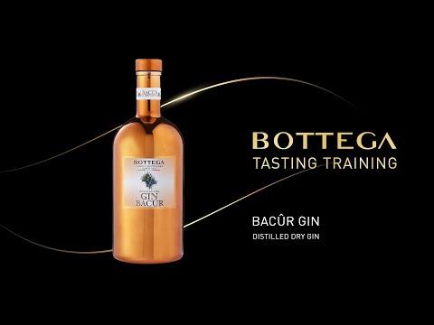 Training: Gin Bacûr Bottega (Italian w/English subtitles)