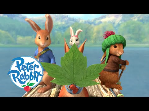 Peter Rabbit - Camping by the Lake   Cartoons for Kids