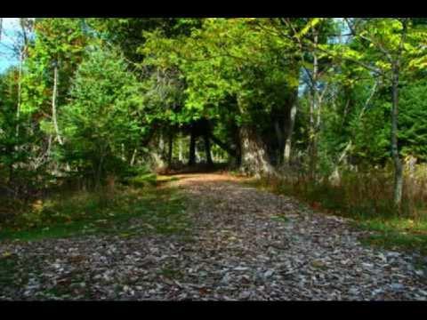 Ephraim Wetlands Preserve - Door County Wisconsin