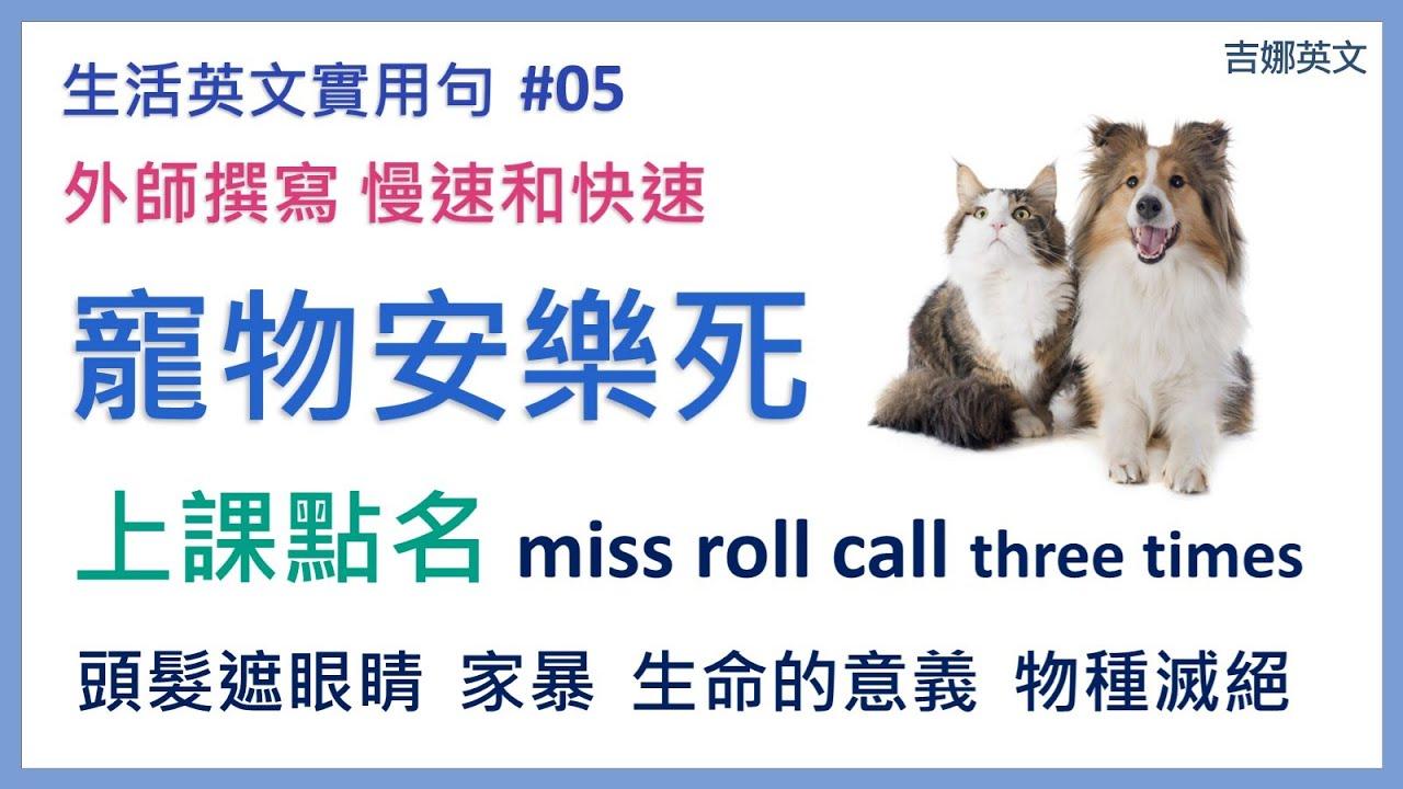 生活英文實用句#05 | 寵物安樂死英文 put down | 點名英文 roll call |  英文聽力 | 英文對話 | 英文口說學習 | 文法句型 | 吉娜英文