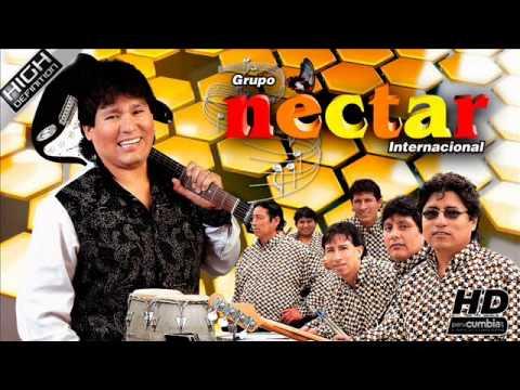 Nectar Botellita De Ron