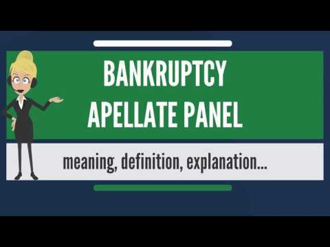 What is BANKRUPTCY APPELLATE PANEL? What does BANKRUPTCY APPELLATE mean?
