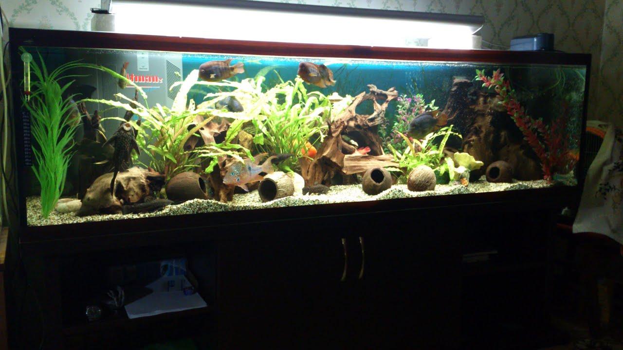 Своими руками аквариумы на 300 литров