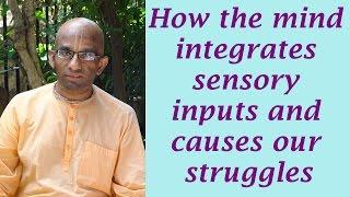 Bhakti Shastri (128) - Bhagavad Gita Chapter 15 Text 07 to 10