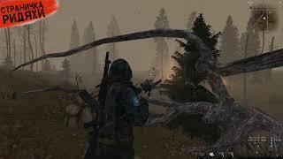 Stalker Online - Стрелок от бога