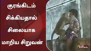 குரங்கிடம் சிக்கியதால் சிலையாக மாறிய சிறுவன்: ஸ்வாரசிய வீடியோ | Viruthunagar
