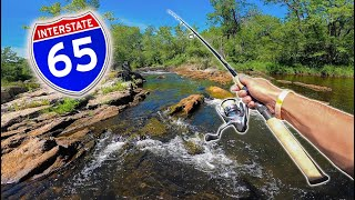 ROADSIDE Creek & Waterfall Fishing CHALLENGE! -- (Northwoods Edition)