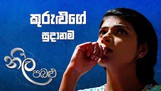 කුරුළුගේ සුදානම 😒 | Neela Pabalu | Sirasa TV Thumbnail