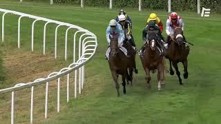 Vidéo de la course PMU GRAND CRITERIUM DES ANGLO-ARABES A 37,5 %