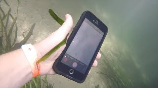 FOUND COINS, BONES, AND WORKING IPHONE IN THE RIVER AND RETURNING IT TO ITS OWNER!!