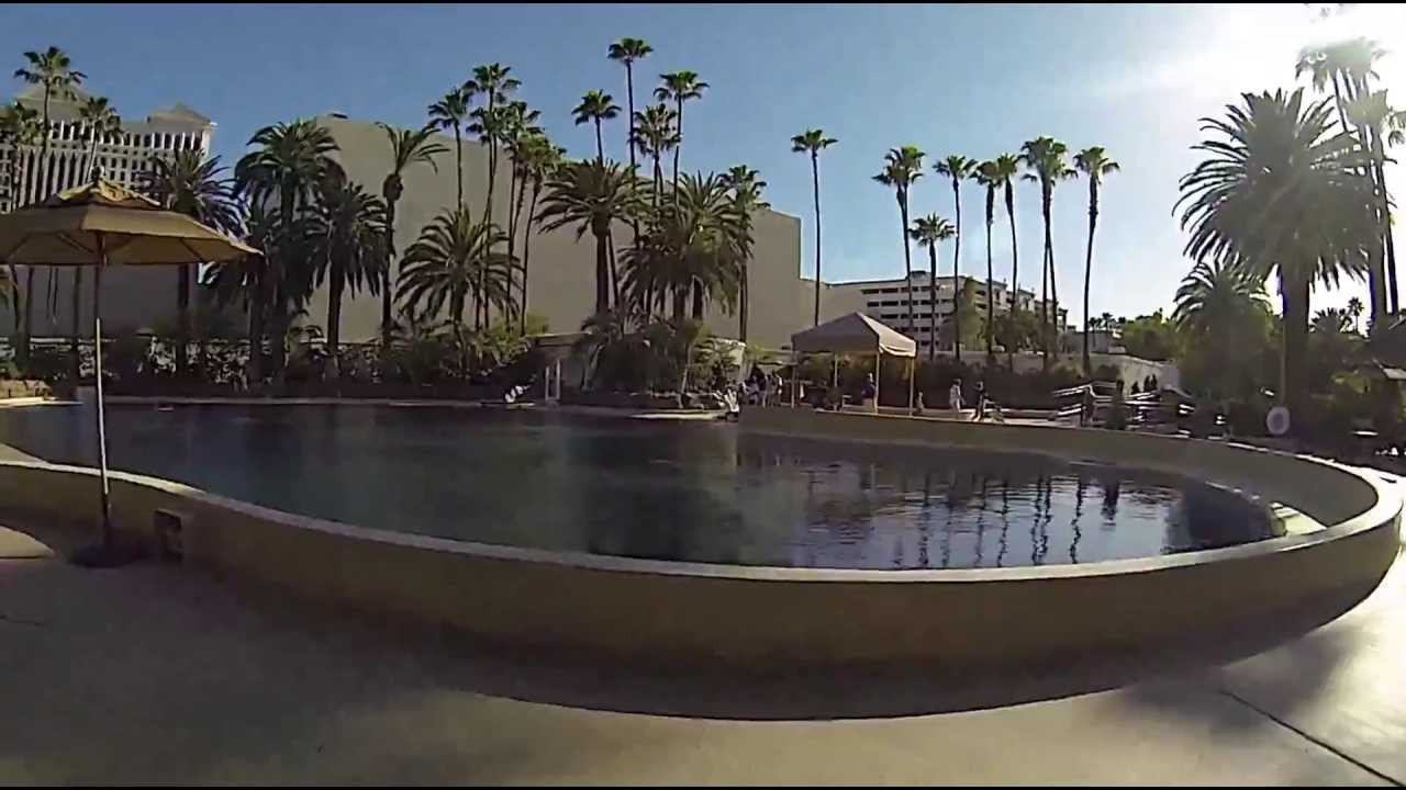 Secret Garden And Dolphin Habitat The Mirage Hotel Youtube