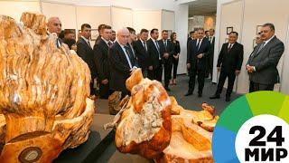 В музее Тувы представили работы министра обороны Сергея Шойгу - МИР 24