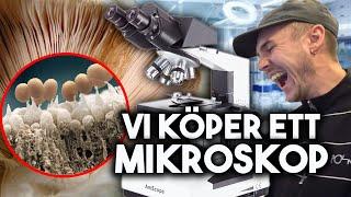 ÄCKLIGA_SAKER_UNDER_MIKROSKOP
