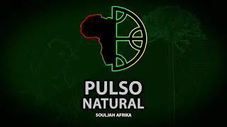 Pulso Natural - SoulJah Afrika (2018) Full Album