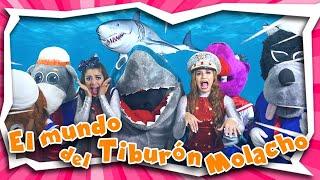 El Mundo del Tiburón Molacho
