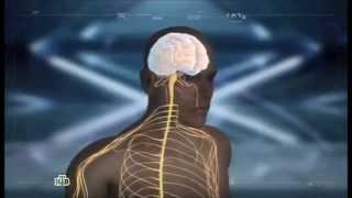 Ученые разработали нейростимулятор, помогающий при тяжелых формах эпилепсии