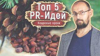 Кедровые орешки - польза пиара, раскрутка с нуля при помощи Путина, Трампа и не только! Взрывной PR