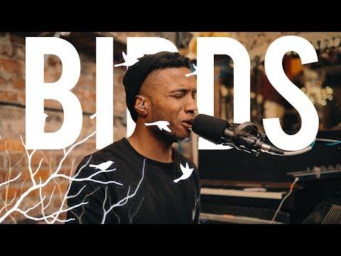 """IAMSON - Birds """"LIVE"""""""