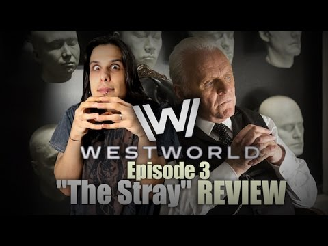 "Westworld Episode 3 ""The Stray"" TV REVIEW & ANALYSIS (SPOILERS)"