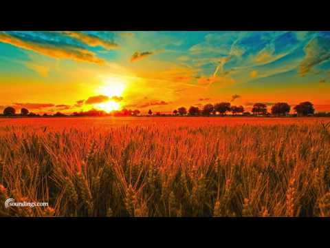 Best Sound Therapy Music Mix - Dean Evenson Sound Healing Playlist