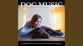 Soft Dog Music