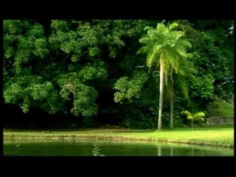 Joao Pessoa Video in English