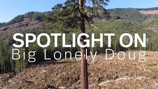Spotlight On: Big Lonely Doug