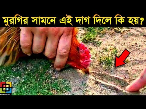 Top 5 Interesting Facts About Animals You Will Learn For the First Time | Taza News