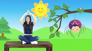 Itsy Bitsy Spider in Spanish - La Araña Pequeñita | Fingerplay | Spanish Songs for Kids