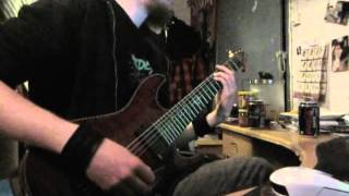 Iniquity - Border Into Shadow guitar cover.