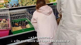 Les animaux ont-ils leur place sur les marchés ?