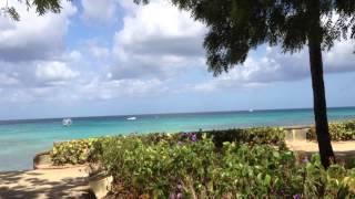 видео Отели Барбадоса возле моря