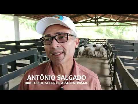 CENTRO DE REPRODUÇÃO ANIMAL RECEBE 17 REPRODUTORES