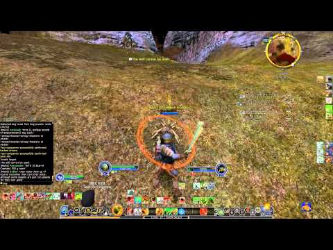 Lotro lvl 27 Captain gameplay (Sound issues with commentary)