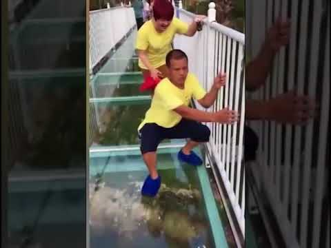 Tourists terrified of cracking glass bridge