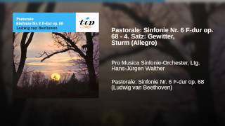 Pastorale: Sinfonie Nr. 6 F-dur op. 68 - 4. Satz: Gewitter, Sturm (Allegro)