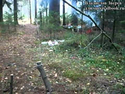 Пружок ловушка для ловли
