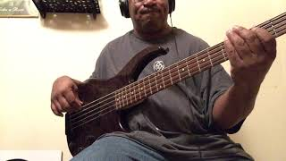 The word is out (bass cover)