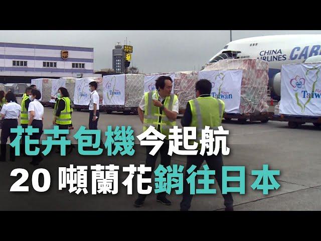 花卉包機今起航 20噸蘭花銷往日本【央廣新聞】